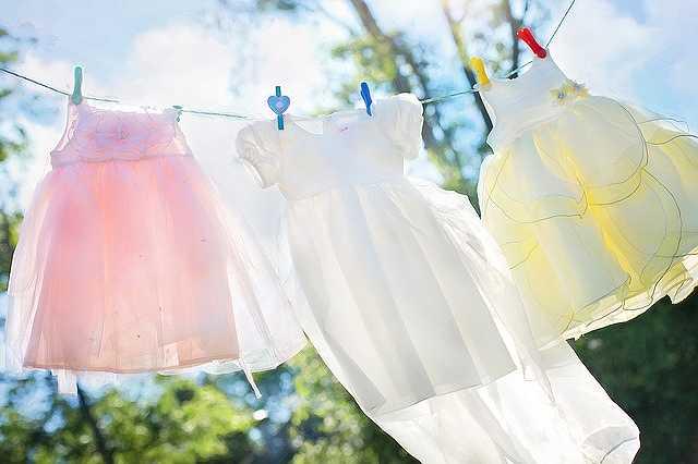 clothesline-804812